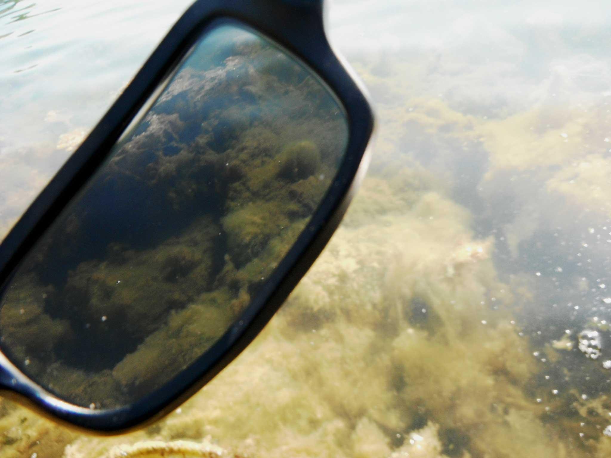 lunette de peche