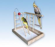 accessoire oiseaux