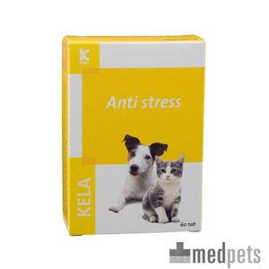 anti stress chien