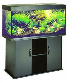 aquarium solde