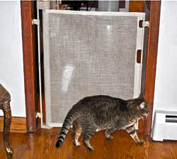 barriere pour chat