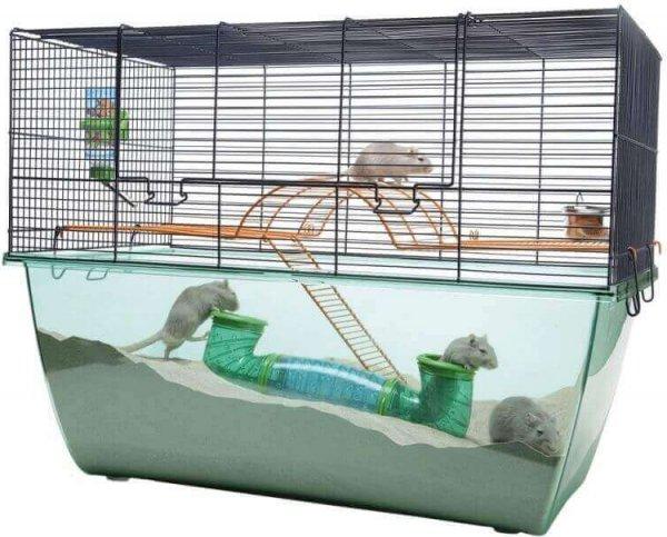 cage à gerbille