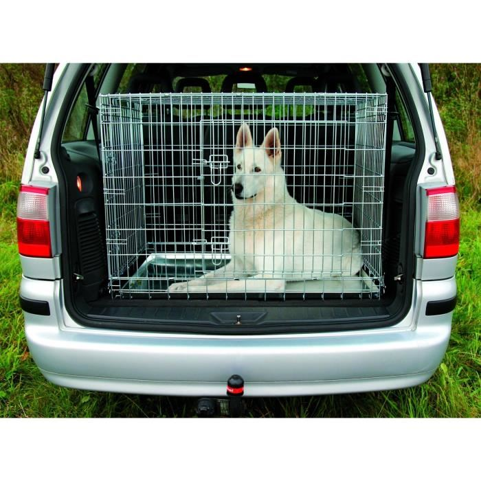 caisse de transport grand chien