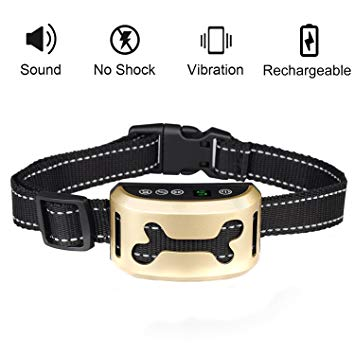 collier anti aboiement chien