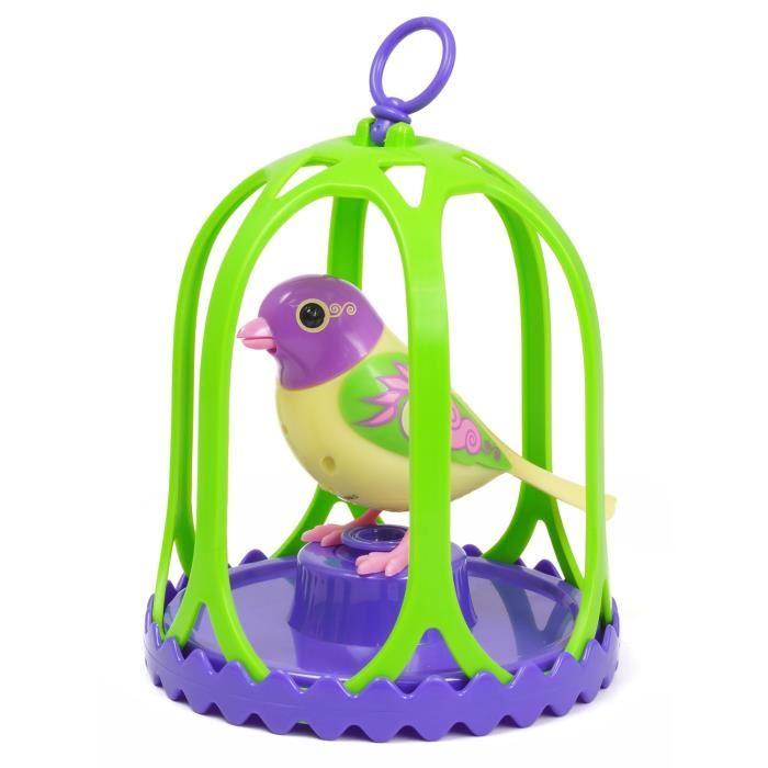 jouet oiseau