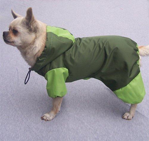 kway chien