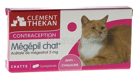pilule chat