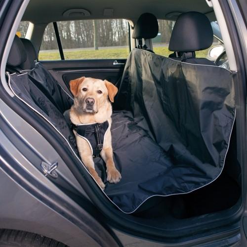 protege voiture chien