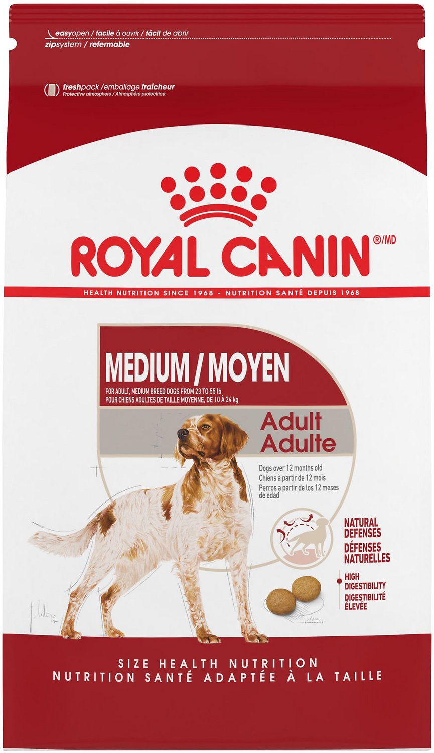 royal canin medium adulte