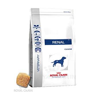 royal canin renal chien